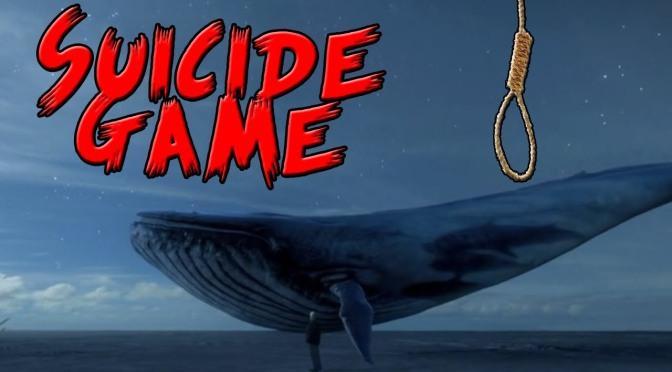 Blue Whale Peli